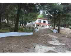Casa de Campo en Petrer Alicante