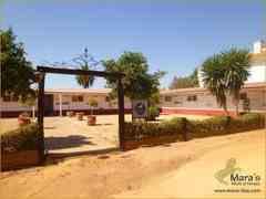 Hotel y Propiedad Ecuestre en Carmona