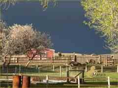 Fincas Ecuestre en Cody Wyoming